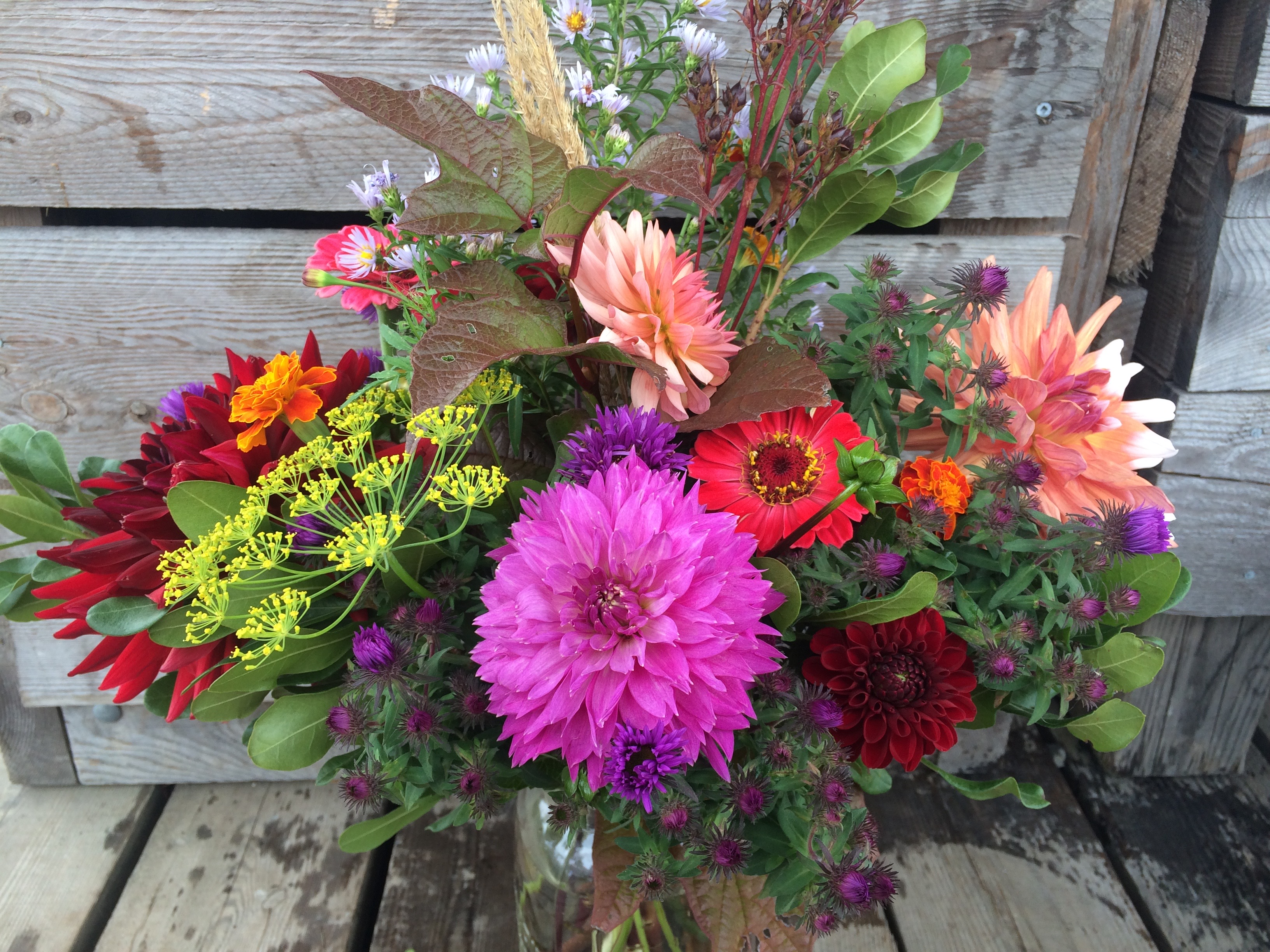 A mid-summer bouquet.  This is a large bouquet, available with advance notice.