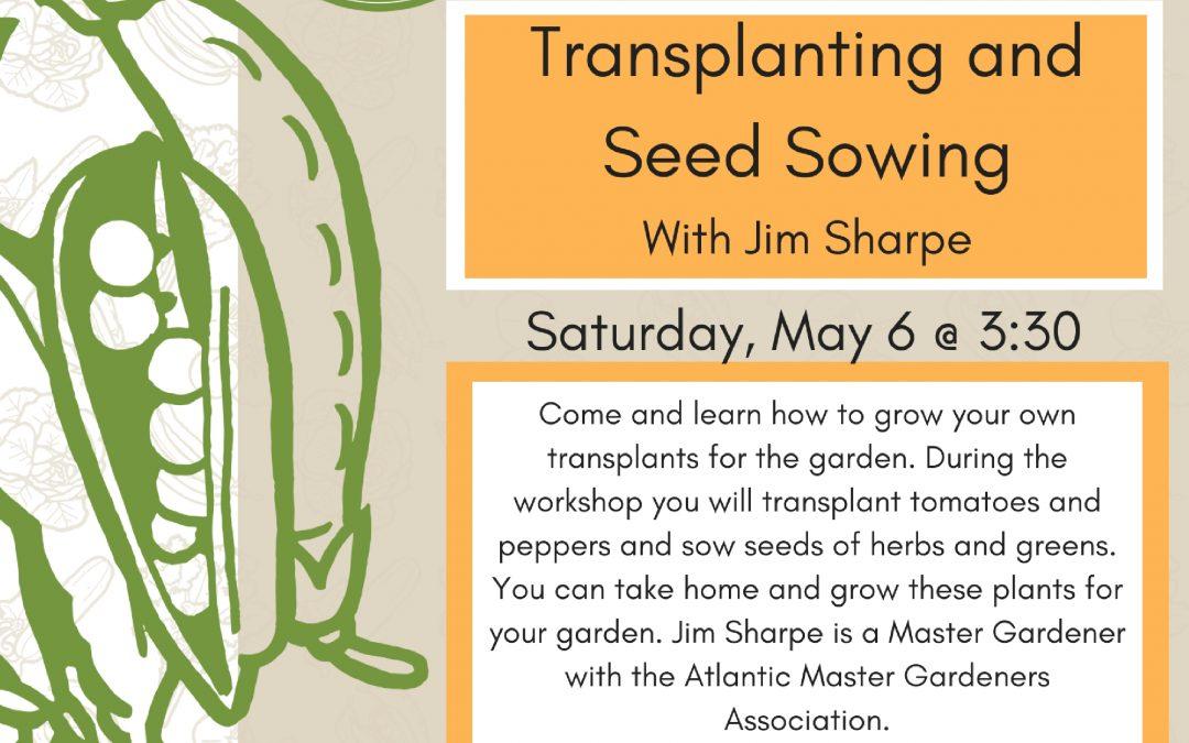 Transplanting and Seed Sowing Workshop