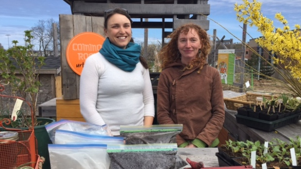 Common Roots Urban Farm grows its business, sells manure, plants- CBC News