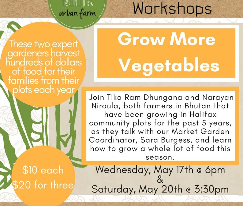 Workshop: Grow More Vegetables
