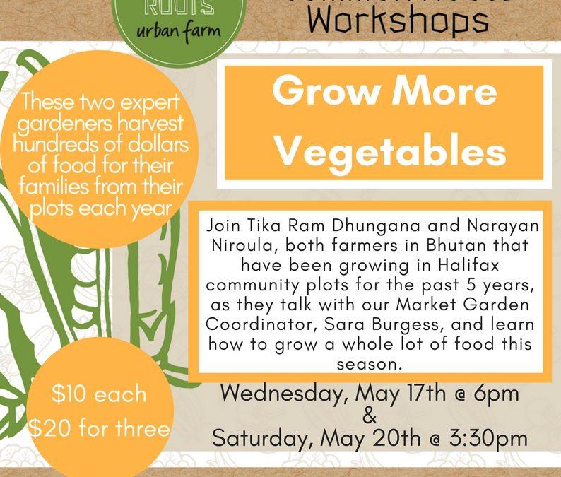 Workshop: Grow More Vegetables