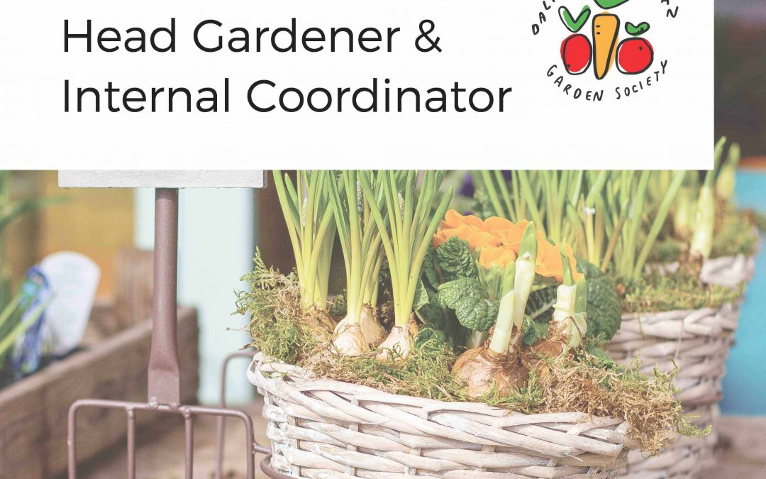 Dalhousie Urban Garden Society Seeking Executives!