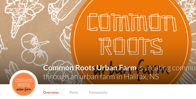 Patreon – a great way to support the farm