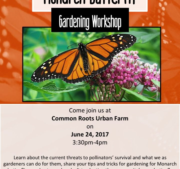 Monarch Butterfly Workshop
