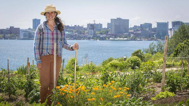 Chronicle Herald – Digging into our roots: Urban farms sowing seeds of possibility