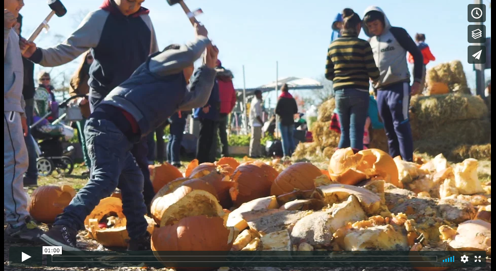 Harvest Hootenanny & Pumpkin Smash, 2017